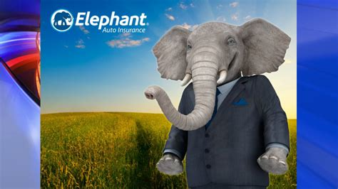 Elephant House Insurance 28 Images Elephant Auto Insurance Get A Quote Save A Ton