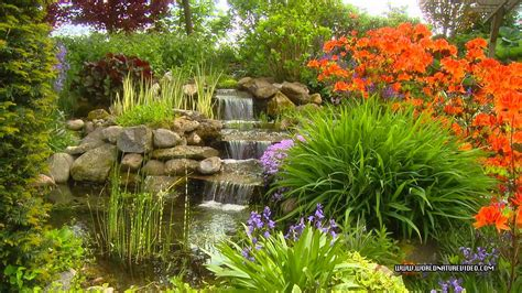 Relaxing Garden Dvd Relax With A Amazing Flower Garden Images Of Flowers Garden
