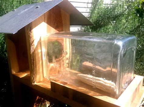 Squirrel Feeders Plans mundane entertainment from squirrel feeders to disintegration bundles