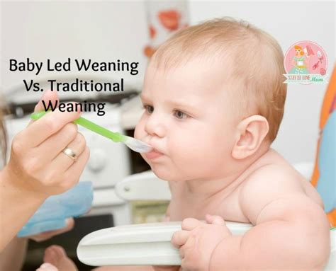 mumcentral baby led weaning exles baby led weaning vs traditional weaning stay at home mum