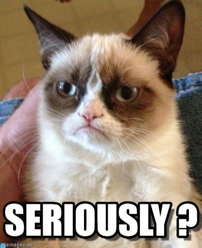 Seriously Meme - seriously grumpy cat meme on memegen
