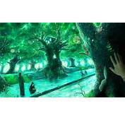 Anime Backgrounds Forest  Galleryhipcom The Hippest Galleries