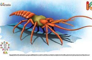 Ensiklopedi Hewan Hewan Purba piranha si ikan setan yang buas ebook anak