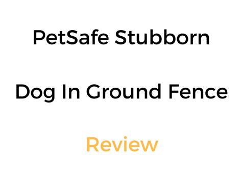 petsafe stubborn in ground fence petsafe stubborn in ground fence review pet containment system