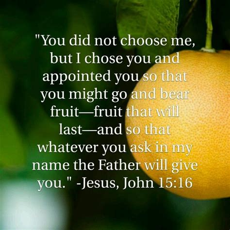 Pdf Not Bearing Fruit by Quot You Did Not Choose Me But I Chose You And Appointed You