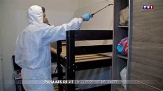 les punaises de lit envahissent stains comment se