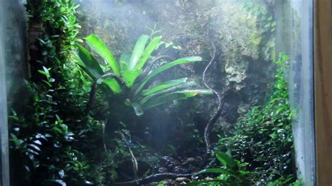 jungle light jungle hobbies led light with mistking system