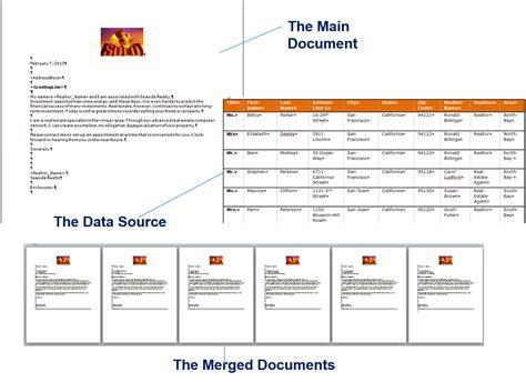 Sle Word Document