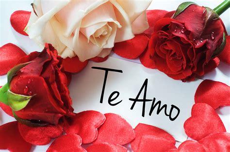 imagenes de rosas rojas para facebook rosas mandarsaludos com