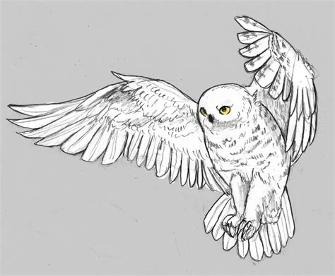 snowy owl by angiemyst on deviantart
