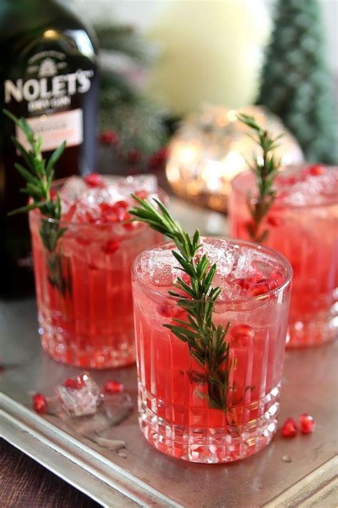 cocktails festive fizz seasonal spirits and merry mocktails to get you in the mood books 25 best ideas about cocktails on