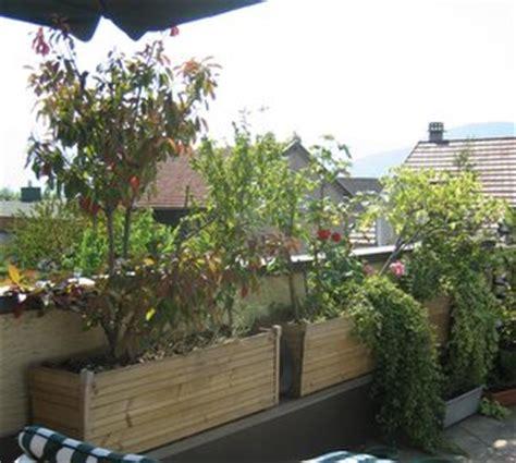 Supérieur Grande Jardiniere Pas Chere #1: img_1050-1.jpg