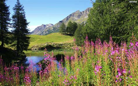 beautiful landscaping beautiful landscape wallpapers for desktop wallpapersafari