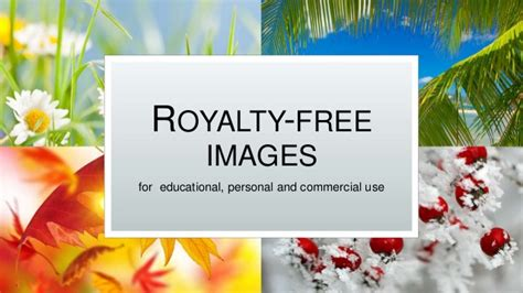 best free royalty free stock photos for commercial use free images pictures and photos for educational