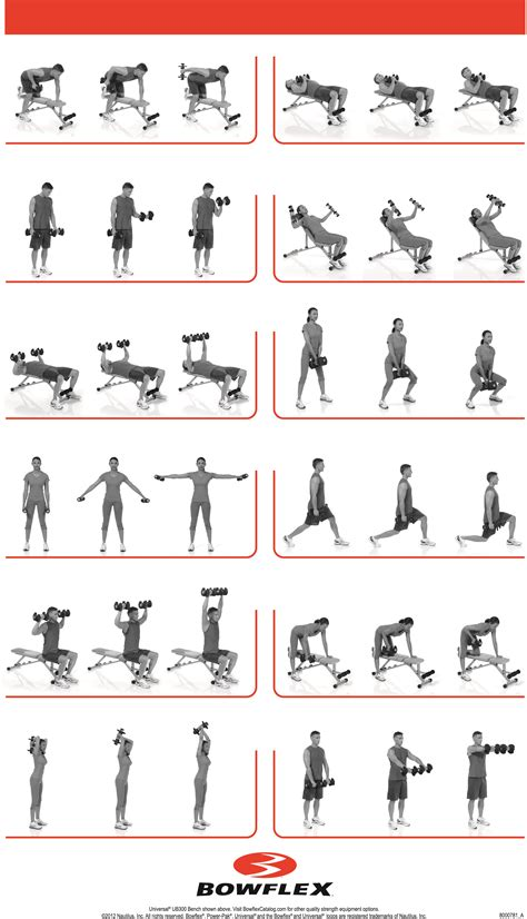workout routine with dumbbells and bench dumbbell workouts 187 health and fitness training