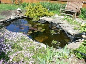 Backyard Water Ideas Diy Water Gardens Designing A Backyard Water Garden