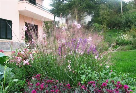 i nostri lavori per aiuole e giardini pagina 0