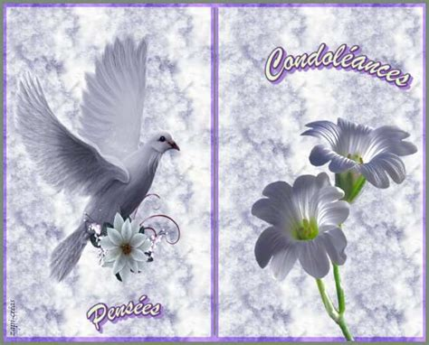 condoleances cartes gratuites