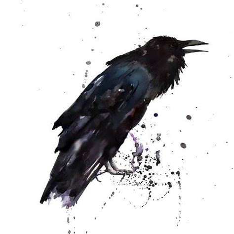 fantastic watercolor raven tattoo design tattooimages biz