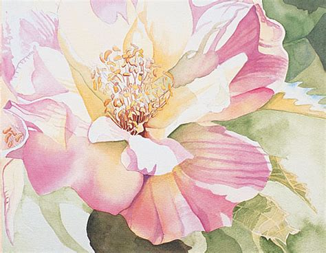 Rose Paint Colors by Watercolor Painting Demonstration Painting Petals