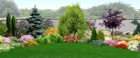 alberi da giardino sempreverdi da ombra piante da giardino sempreverdi e fiorite quali scegliere