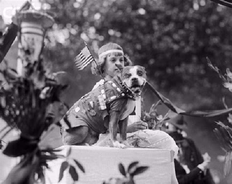 How Sergeant Stubby Died This Brave Stubby Tailed Pit Bull Was America S War