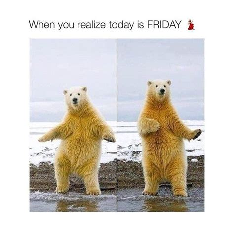 Today Is Friday Meme - 91 best images about funny friday memes on pinterest