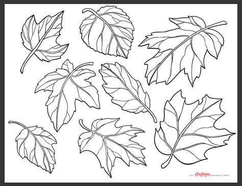 coloring page of pumpkins and leaves fall pumpkin coloring page images l 193 pinterest fall
