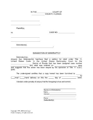 bankruptcy form florida bankruptcy forms fill printable
