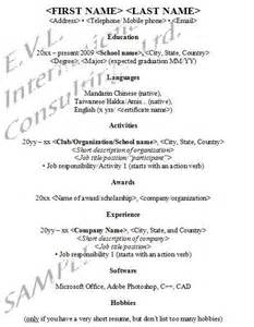 Curriculum Vitae Good Example by
