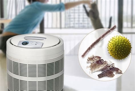 pictures of allergy relief at home ac filters electronic air cleaners and more