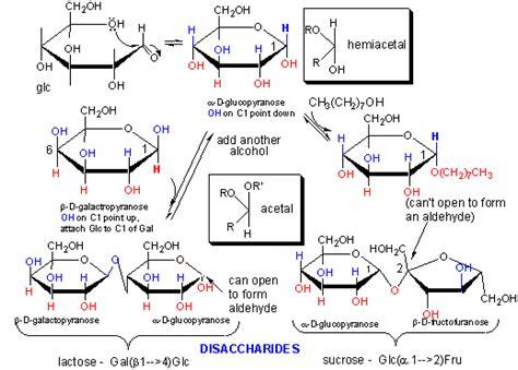 carbohydrates bonds carbohydrates carbohydrates bonds