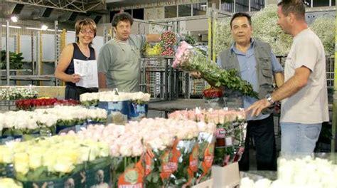 mercato dei fiori di pescia il mercato dei fiori attende soldi montecatini la nazione