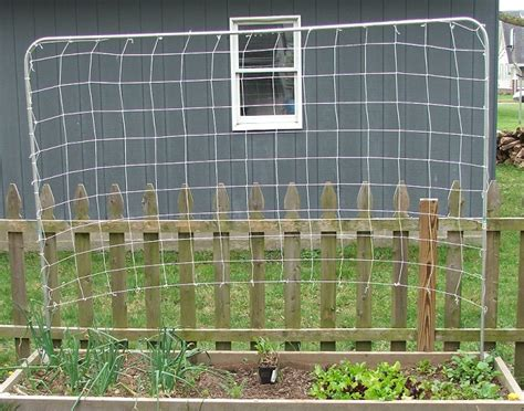 How To Use Trellis Netting trellis netting how to easy to build and great for vining plants
