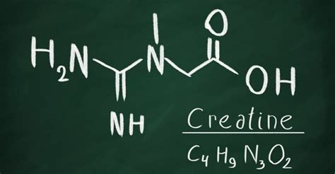 creatine health benefits 6 surprising health benefits of creatine well being secrets