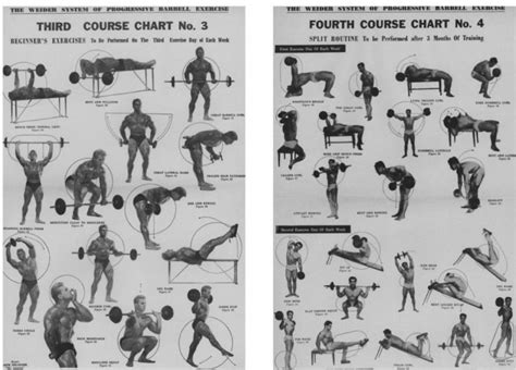 joe weider exercise equipment