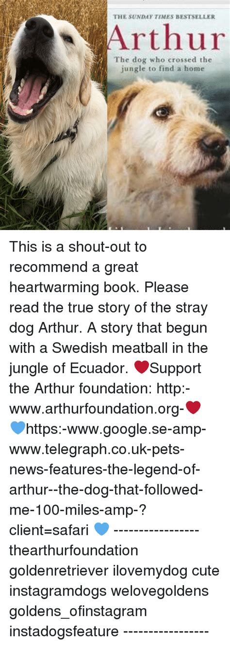 arthur the who crossed the jungle to find a home books 25 best memes about swedish meatballs swedish meatballs