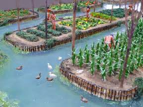 Aztec Floating Gardens by Chinas Artificial Islands Created By The Aztecs To
