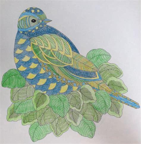 millie marottas animal kingdom 10 images about millie marotta on coloring moth and animal kingdom
