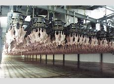 BAADER Food Processing Machinery Meat Processing