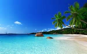 tropical island paradise tropical paradise beach ocean sea palm summer coast
