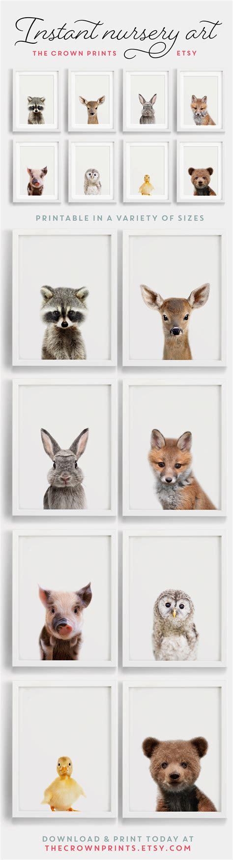 Woodland Animals Nursery Art Thenurseries Woodland Animals Nursery Decor