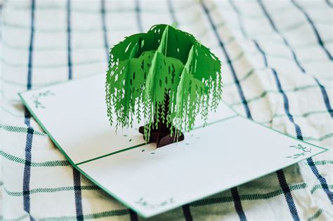 pop up tree card template willow tree pop up card birthday card anniversary card