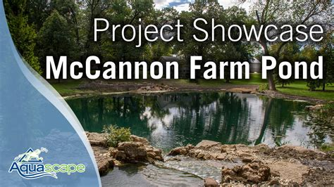 million dollar backyard pond aquascape project showcase mccannon farm pond youtube