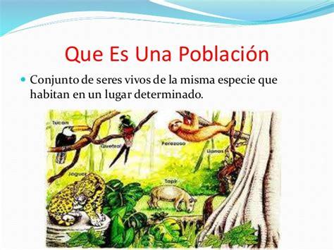 dresser en español que es ecosistema cuidemos todo lo que hay a nuestro alrededor