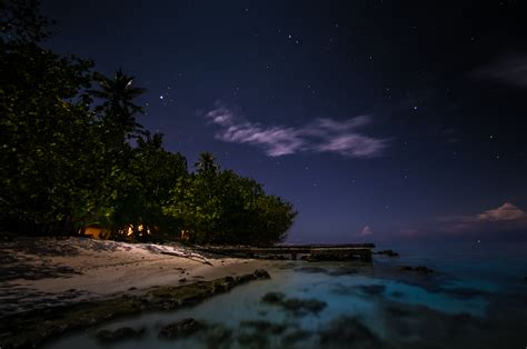 tropical island  night pattern pictures