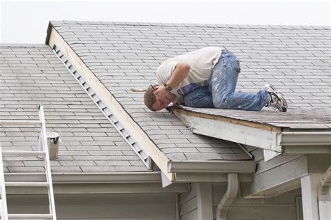 basic tips for identifying roof repair needs and materials
