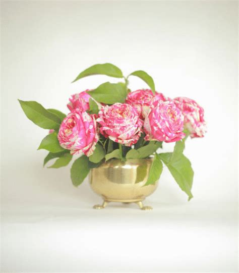 cheapest flowers for centerpieces 3 simple cheap and pretty flower arrangements flowers and plants pretty flowers