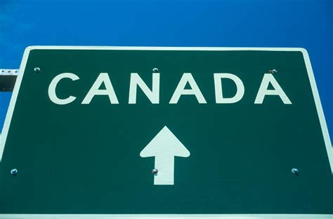 moving to canada how to actually move to canada if trump is elected president quirlycues