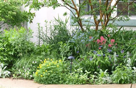 perennial border gardens pinterest